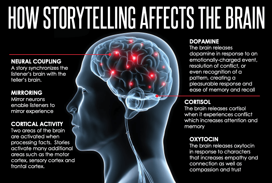 The Brain's Response to Storytelling